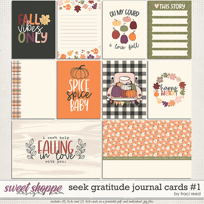 Seek Gratitude Journal Cards #1 by Traci Reed