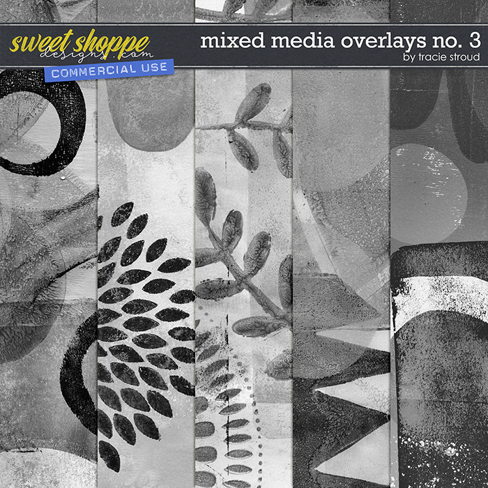 CU Mixed Media Overlays no. 3 by Tracie Stroud