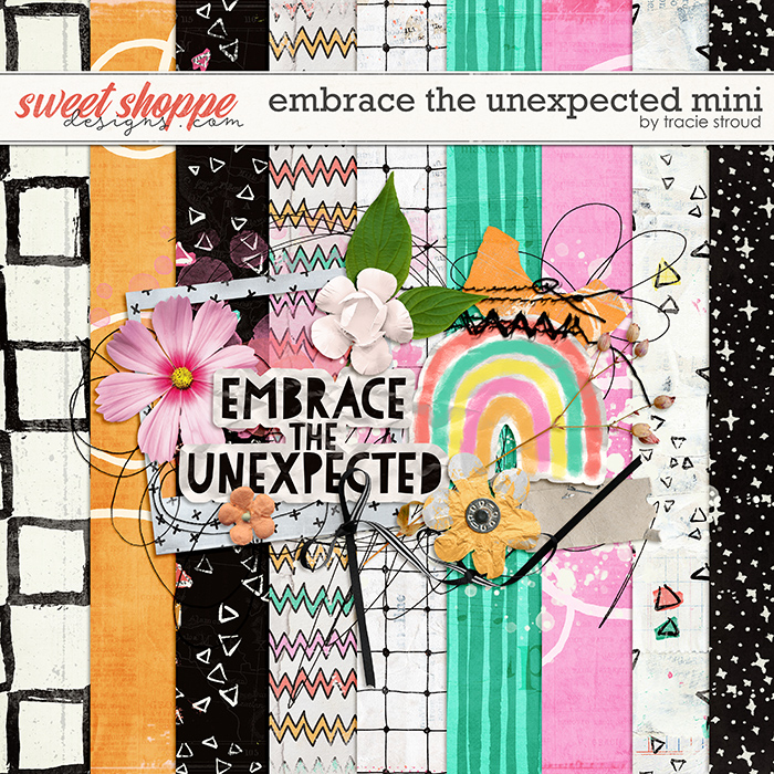 Embrace the Unexpected Mini by Tracie Stroud