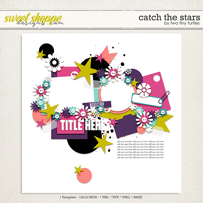 Catch The Stars by Two Tiny Turtles