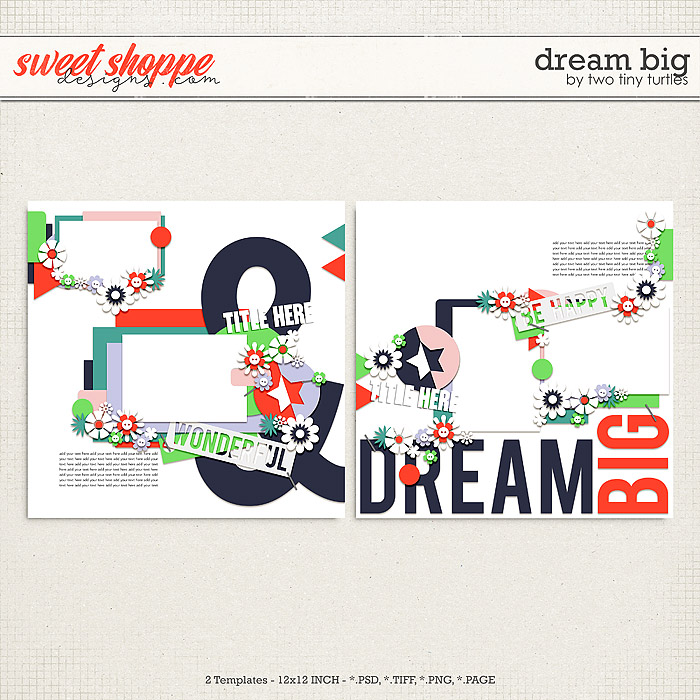 Dream Big by Two Tiny Turtles