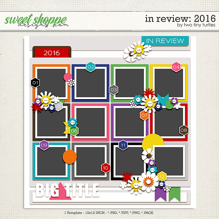 In Review: 2016 by Two Tiny Turtles