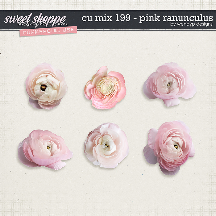 CU Mix 199 - pink ranunculus by WendyP Designs