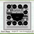 Cindy's Layered Templates - Single 57: Lots of Snapshots 26 by Cindy Schneider