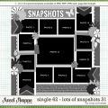 Cindy's Layered Templates - Single 62: Lots of Snapshots 31 by Cindy Schneider