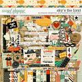 Sky's The Limit by Shawna Clingerman, Jenn Barrette and Studio Basic