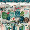 Blossom by Kristin Cronin-Barrow