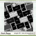 Cindy's Layered Templates - Single 93: Lots of Snapshots 51 by Cindy Schneider