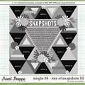 Cindy's Layered Templates - Single 95: Lots of Snapshots 53 by Cindy Schneider