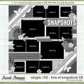 Cindy's Layered Templates - Single 102: Lots of Snapshots 58 by Cindy Schneider