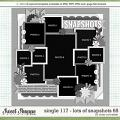 Cindy's Layered Templates - Single 117: Lots of Snapshots 68 by Cindy Schneider