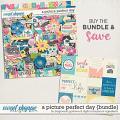 A Picture Perfect Day Bundle by Blagovesta Gosheva & Digital Scrapbook Ingredients