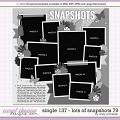 Cindy's Layered Templates - Single 137: Lots of Snapshots 79 by Cindy Schneider