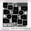Cindy's Layered Templates - Single 138: Lots of Snapshots 80 by Cindy Schneider