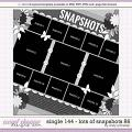 Cindy's Layered Templates - Single 144: Lots of Snapshots 86 by Cindy Schneider