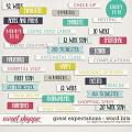 Great Expectations | Word Bits by Digital Scrapbook Ingredients