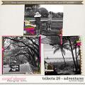 Brook's Templates - Trifecta 26 - Adventurer by Brook Magee