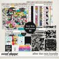 After The Rain Bundle by Studio Basic