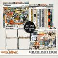 High Cool Bundle by Captivated Visions & Studio Basic Designs