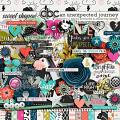 An Unexpected Journey by Amanda Yi, Becca Bonneville & Dream Big Designs