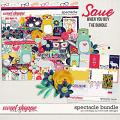 Spectacle - Bundle by River Rose and WendyP Designs