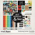 Learning Zone: Bundle by Amanda Yi
