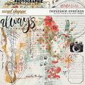 Reminisce Overlays by River Rose & Studio Basic Designs