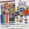Believe in Magic: Remember Me Collection by Amber Shaw & Studio Flergs
