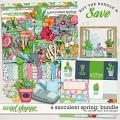 A Succulent Spring: Bundle by Amber Shaw and LJS Designs