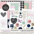 Easy Print: A Special Someone 1 by Grace Lee and Kelly Bangs Creative