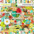 Summerscape Kit by Studio Basic and Little Butterfly Wings