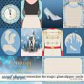 Remember the Magic: GLASS SLIPPER- CARDS by Studio Flergs