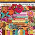 50 States: Arizona by Kelly Bangs Creative