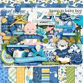 Bump To Baby Boy by LJS Designs