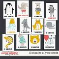 12 MONTHS OF YOU: POCKET CARDS by Janet Phillips