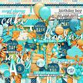 Birthday Boy by Digital Scrapbook Ingredients