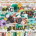 12 Months: March by Amanda Yi