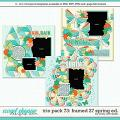 Cindy's Layered Templates - Trio Pack 73: Framed 27 Spring Ed. by Cindy Schneider