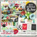 12 Months: June Bundle by Amanda Yi