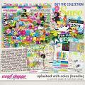 Splashed With Color Bundle by Ponytails Designs & Studio Basic