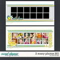 2 MANY PHOTOS 261 by Janet Phillips