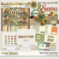 Harvest Bundle by Ponytails