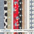 Cozy Winter - Bonus Papers by Red Ivy Design