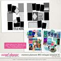 Memory Planners - Big - Collages #1 by Traci Reed