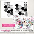 Memory Planners - Big - Hexagons #1 by Traci Reed
