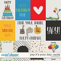 Yay It's Your Day: Cards by Amanda Yi
