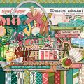 50 States: Missouri by Kelly Bangs Creative