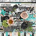 No Ordinary Life: Kit by River Rose Designs