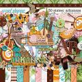50 States: Arkansas by Kelly Bangs Creative