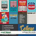 College Life by Cards Clever Monkey Graphics